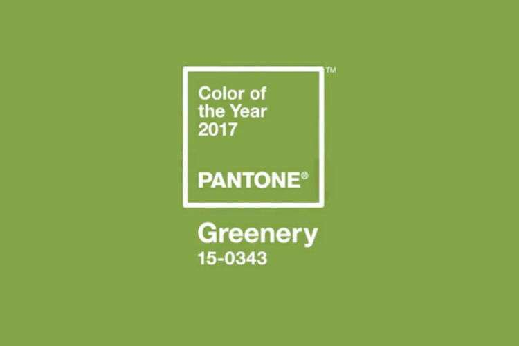 Pantone назвал главный цвет 2017 года